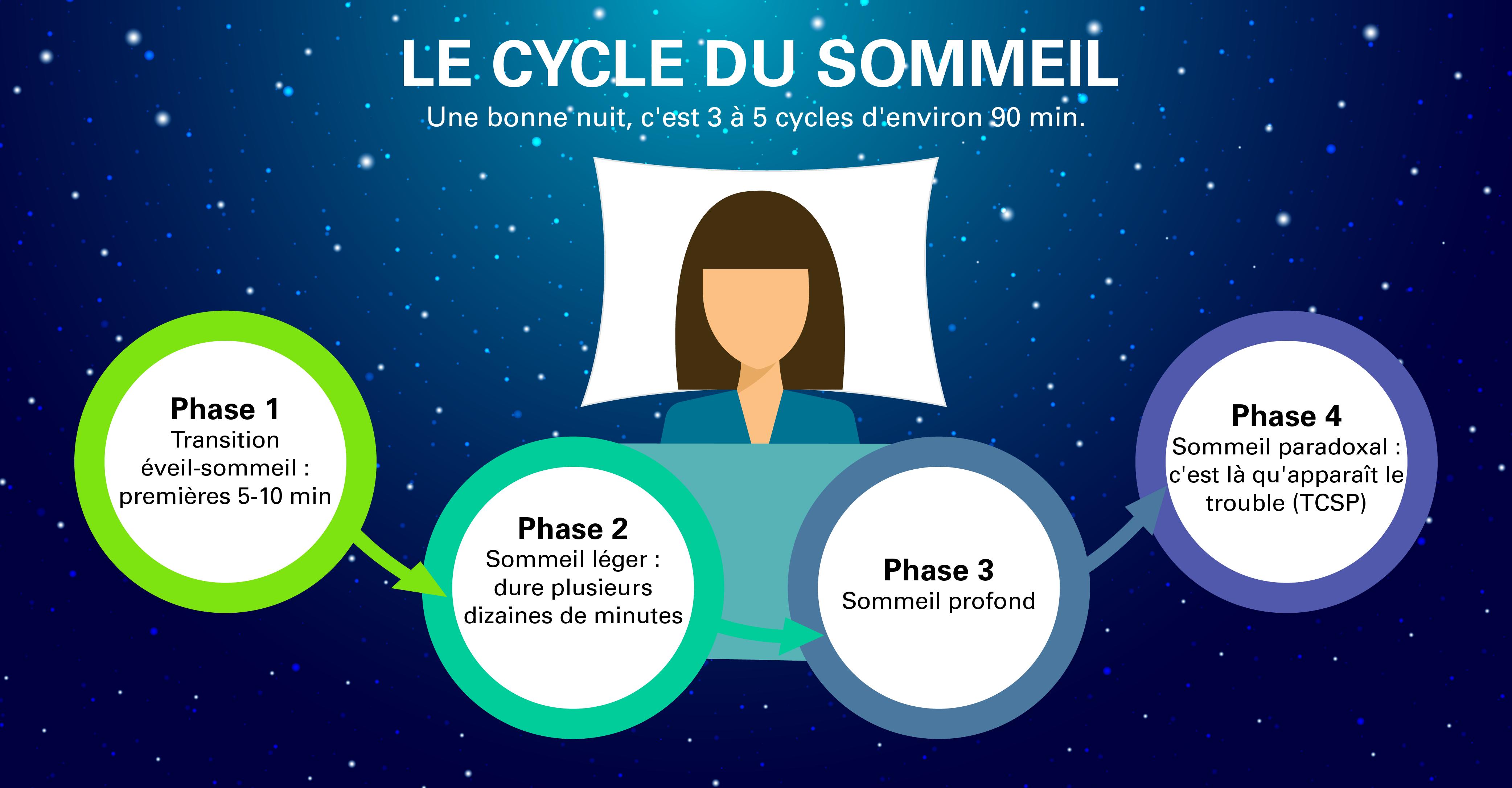 Le cycle du sommeil