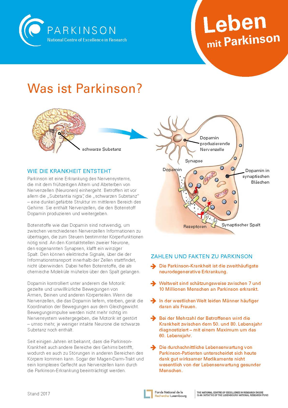 Factsheet - Was ist Parkinsons